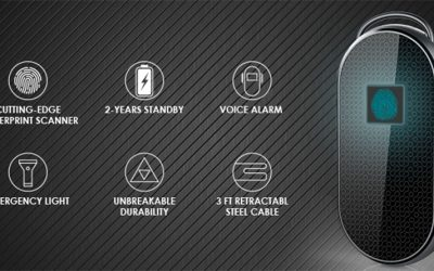 500mAh Lithium Polymer Akkus für Fingerprint Vorhängeschloss